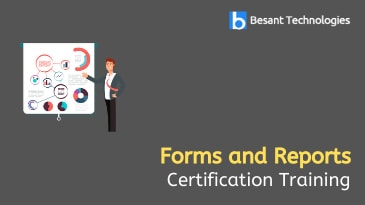 Forms and Reports Training in OMR